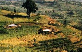 Pemukiman Penduduk Tersebar